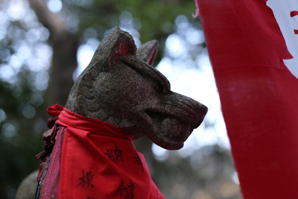 佐助稲荷の狐様